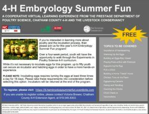 4-H flyer for summer embryology program