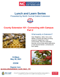 County Extension 101: Connecting With Campus Park 2 Flyer