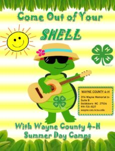 Cover photo for 2021 Wayne County 4-H Summer Day Camps