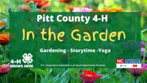 Cover photo for Pitt County 4-H: In the Garden