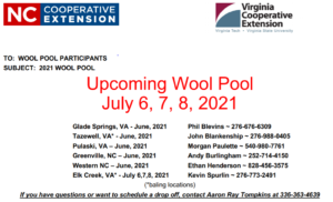 Cover photo for 2021 Wool Pool
