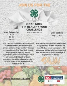 Cover photo for Dinah Gore 4-H Healthy Food Challenge
