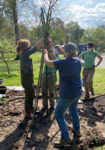 Cover photo for Master Gardener Volunteers Design Art Garden for Orchard Park