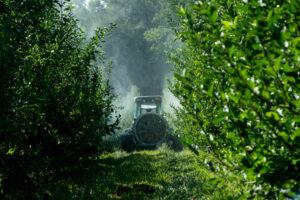 Sprayer in orchard