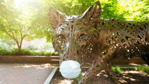 One of the copper wolves at Wolf Plaza on NC State University's campus wears a protective face mask during the COVID-19 pandemic.