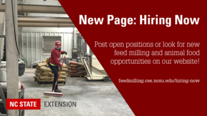 New Page: Hiring Now Banner Image