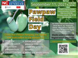 Cover photo for Pawpaw Field Day Will Be Celebrated September 11, 2021