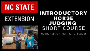 Cover photo for 2021 Fall Horse Judging Short Course & Certification Clinic Planned