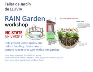 Cover photo for Rain Garden Workshop