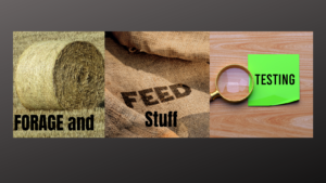 Cover photo for Forage and Feed Stuff Testing